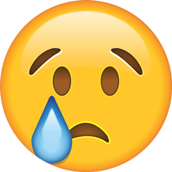 20 204653 emoticon of smiley face tears crying joy sad